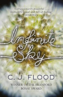 Cover for Infinite Sky by C. J. Flood