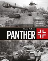 Panther by Thomas Anderson