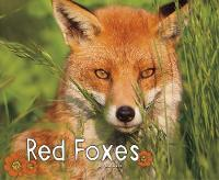 Red Foxes by G. G. Lake