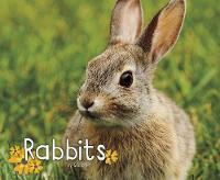 Rabbits by G. G. Lake