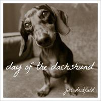 Day of the Dachshund by Jim Dratfield