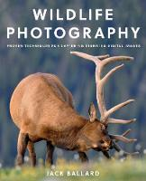 Wildlife Photography Proven Techniques for Capturing Stunning Digital Images by Jack Ballard