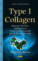 Type I Collagen Molecular Structure, Applications in Tissue Engineering & Role in Human Disorders by Gretchen Rivera