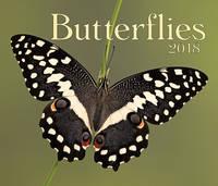 Butterflies by Firefly Books