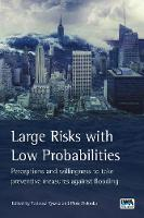 Large Risks with Low Probabilities: Perceptions and willingness to take preventive measures against flooding by Tadeusz Tyszka