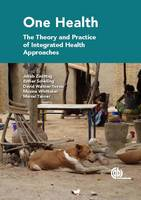 One H The Theory and Practice of Integrated Health Approaches by Angela Cassidy