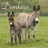 Donkeys Calendar 2018 by Avonside Publishing Ltd.