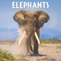 Elephants Calendar 2018 by Avonside Publishing Ltd.