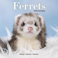 Ferrets Calendar 2018 by Avonside Publishing Ltd.