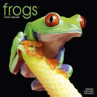 Frogs Calendar 2018 by Avonside Publishing Ltd.