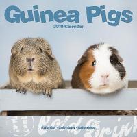 Guinea Pigs Calendar 2018 by Avonside Publishing Ltd.