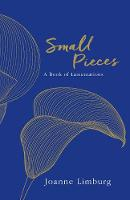 Small Pieces A Book of Lamentations by Joanne Limburg