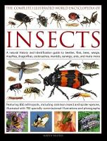 The Complete Illustrated World Encyclopedia of Insects A Natural History and Identification Guide to Beetles, Flies, Bees, Wasps, Mayflies, Dragonflies, Cockroaches, Mantids, Earwigs, Ants, and Many M by Martin Walters