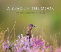 A Year on the Moor by Tarquin Millington-Drake, Jeremy Herrmann