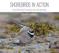 Shorebirds in Action An Introduction to Waders and Their Behaviour by Richard Chandler