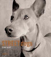 Street Dogs by Traer Scott