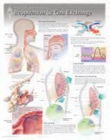 Respiration & Gas Exchange by Scientific Publishing