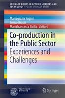 Co-Production in the Public Sector Experiences and Challenges by Mariagrazia Fugini