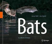 Bats In a World of Echoes by Johan Eklof, Jens Rydell