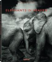 Elephants in Heaven by Joachim Schmeisser