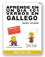 Aprende En Un Dia 101 Verbos En Gallego by Rory Ryder