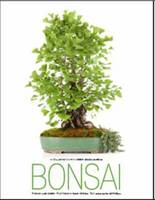 Bonsai by Anna Maria Botticelli, Fabio Petroni