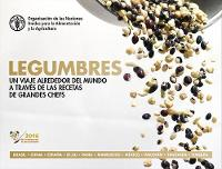 Pulses (Recipes) A Global Journey Through Recipes from Leading Chefs by Food and Agriculture Organization of the United Nations