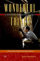 Wonderful Things From 1914 to the Twenty-First Century A History of Egyptology by Jason Thompson