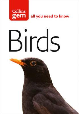 Gem Birds by