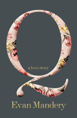 Q : A Love Story by Evan J. Mandery
