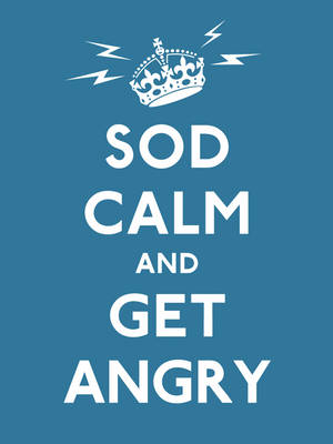 Sod Calm and Get Angry resigned advice for hard times by