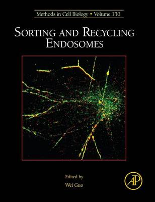 Sorting and Recycling Endosomes by Wei (Carolyn Lynch Laboratories, University of Pennsylvania, USA) Guo