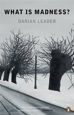 What Is Madness? by Darian Leader
