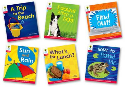 Oxford Reading Tree Floppy's Phonics Non-Fiction Level 4 Pack of 6 by Clare Llewellyn, Monica Hughes, Thelma Page, Roderick Hunt