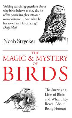 The Magic and Mystery of Birds The Surprising Lives of Birds and What They Reveal About Being Human by Noah Strycker