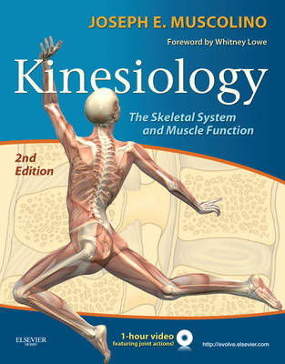 Kinesiology The Skeletal System and Muscle Function by Joseph E. Muscolino