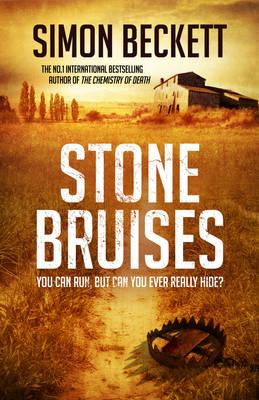 Stone Bruises by Simon Beckett