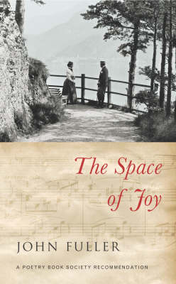 The Space of Joy by John Fuller