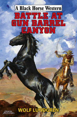 Battle at Gun Barrel Canyon by Wolf Lundgren