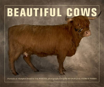Beautiful Cows by Valerie Porter, Jeremy Hopley, Andrew Perris