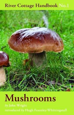 Mushrooms by John Wright