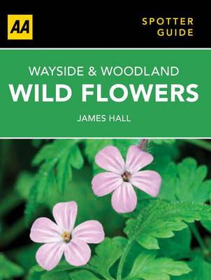 Wayside & Woodland Wild Flowers by James Hall