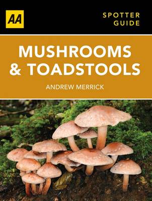 Mushrooms & Toadstalls by Andrew Merrick