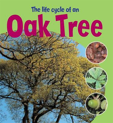 The Life Cycle of an Oak Tree by Ruth Thomson