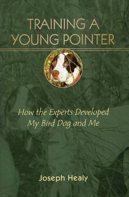 Training a Young Pointer How the Experts Developed My Bird, Dog and Me by Joseph Healy