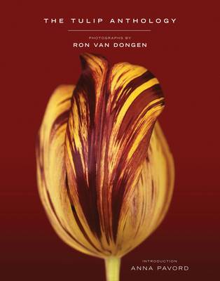 Tulip Anthology by Ron Van Dongen