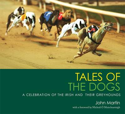 Tales of the Dogs A Celebration of the Irish and Their Greyhounds by Martin John