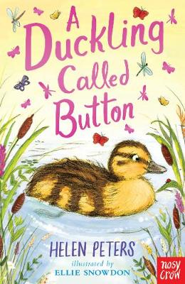 Cover for A Duckling Called Button by Helen Peters
