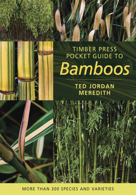 Timber Press Pocket Guide to Bamboos by Ted Jordan Meredith