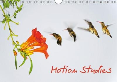 Motion Studies 2018 Twelve Dynamic Motion Studies Show Different Subjects: Animals, People, Sports and Their Movements. by Thomas Zeidler